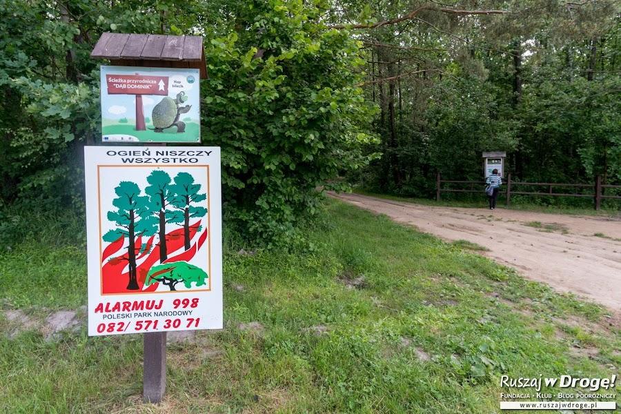 Poleski Park Narodowy - na ścieżce Dąb Dominik