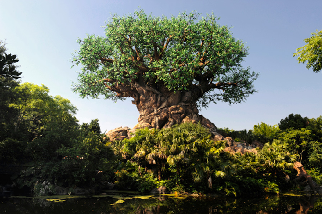 The Tree of Life no Animal Kingdom em Orlando