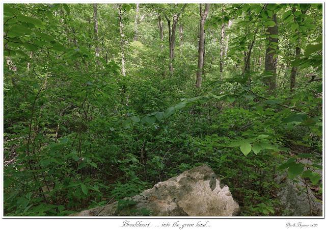 Breakheart: ... into the green land...