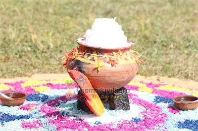 கிழக்கு மாகாண கல்வித் திணைக்களத்தின்  பொங்கல்விழா கண்ணகிபுரத்தில் சிறப்பாக நடைபெற்றது