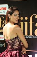 Pragya Jaiswal Sizzles in a Shantanu Nikhil Designed Gown  Exclusive 012.JPG