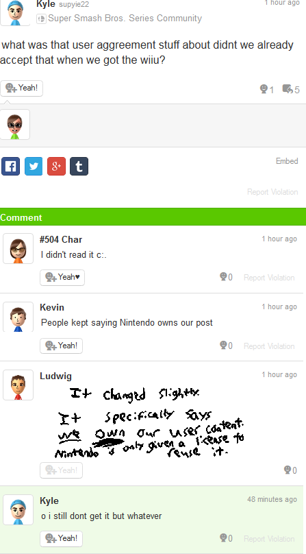 No one reads Nintendo Network Services Agreement Miiverse terms of service