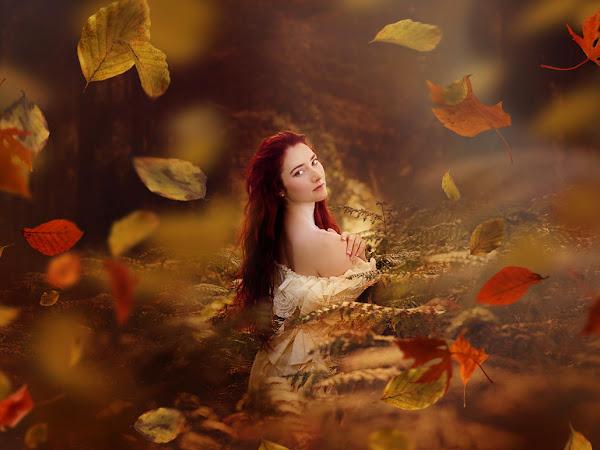 Falling Leaves Overlays Free Tutorial
