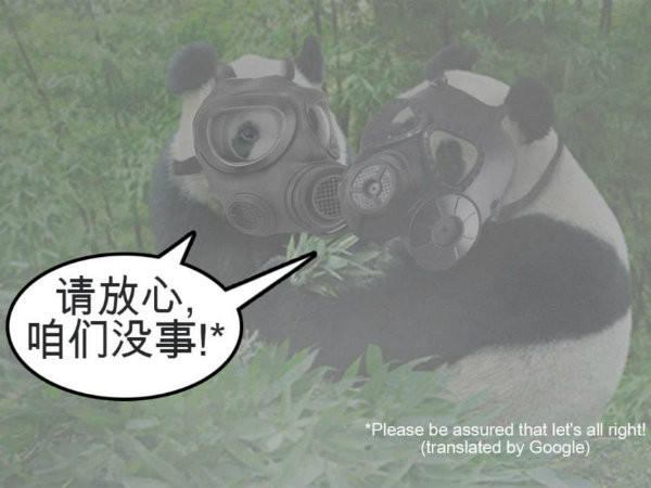 Poor Jia Jia and Kai Kai.... <br>请放心,咱们没事!(qǐng fàng​ xīn,  zán​ men méi​ shì) - Please don't worry, we are all right!