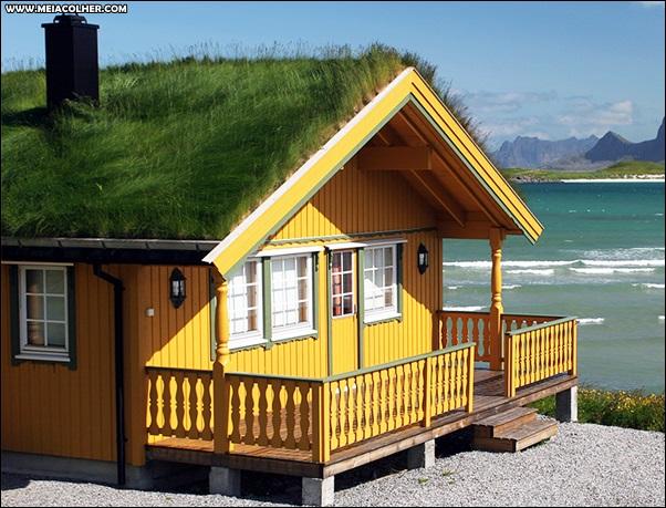 casa de madeira com mato no telhado