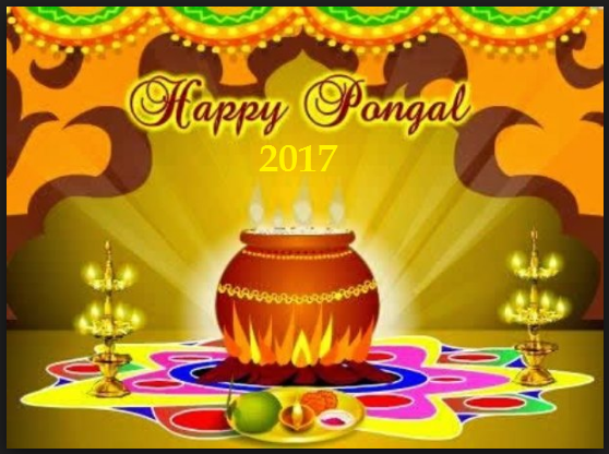 Pongal Celebration 2017