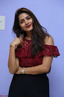 Pavani Gangireddy in Cute Black Skirt Maroon Top at 9 Movie Teaser Launch 5th May 2017  Exclusive 079.JPG