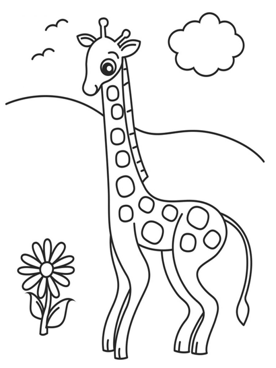 Giraffe Looking flower Coloring Page