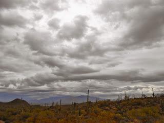 rain clouds over saguaro national park