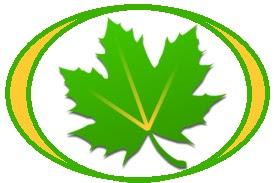 Greenify v2.8.1 Pro Apk Terbaru