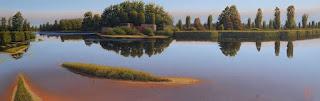 pinturas-paisajes-mejores-naturales