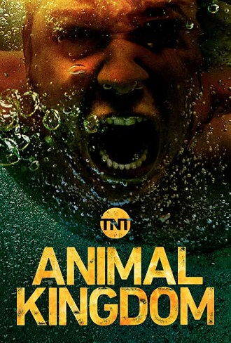 Animal Kingdom Season 1 Complete Download 480p All Episode
