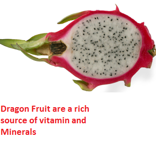 Dragon Fruit are a rich source of vitamin and Minerals