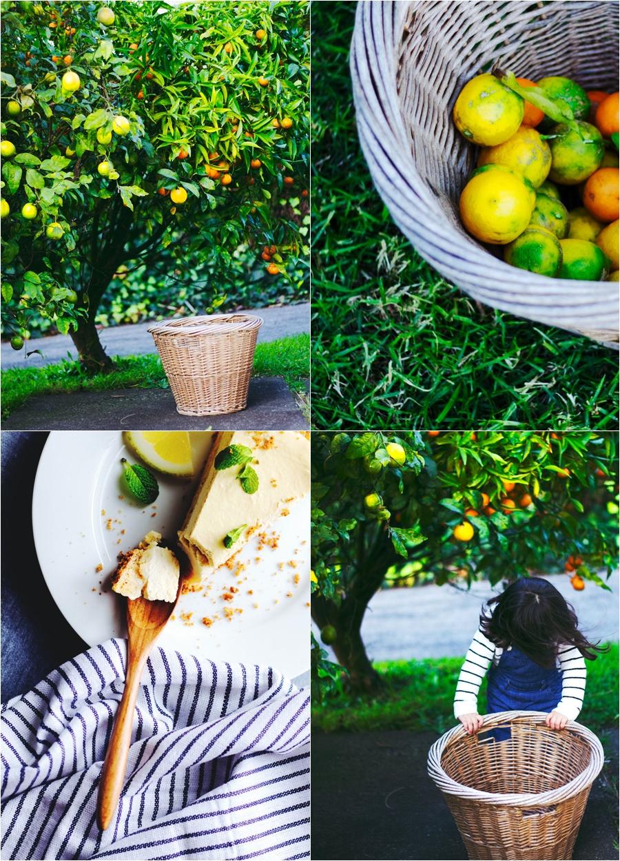 Lemon Ricotta Tart, Refined sugar-free, recipe, sweet, tart