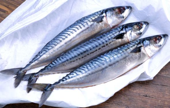 Hasil gambar untuk masakan ikan makarel