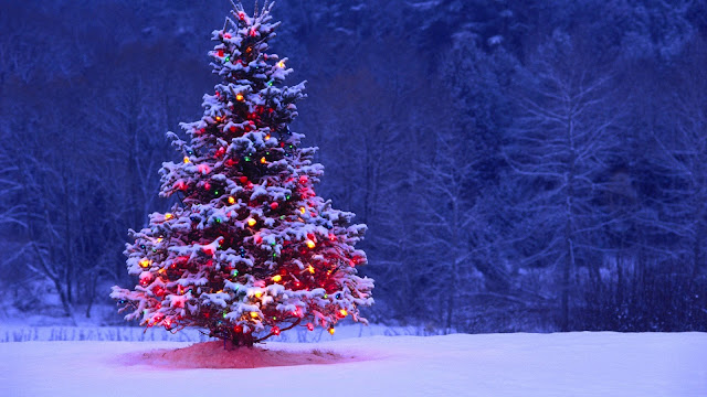 Awesome winter christmas tree