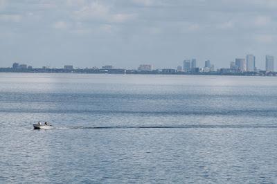 Vista de la Bahía de Tampa