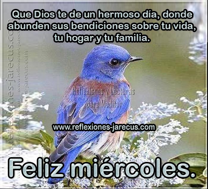 Feliz miércoles, que Dios te de un hermoso día, donde abunden bendiciones sobre tu vida, tu hogar y tu familia