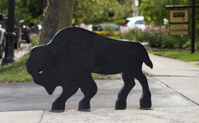 A Taste of Buffalo: Buffalo sculpture in Elmwood Village