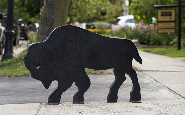 A Taste of Buffalo: Buffalo sculpture in Elmwood Village