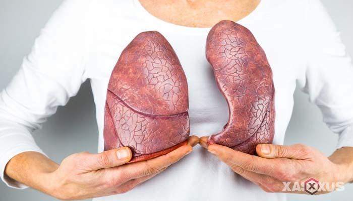 Fakta 4 - Paru-paru janin 38 minggu menghasilkan lebih banyak surfaktan