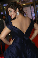 Payal Ghosh aka Harika in Dark Blue Deep Neck Sleeveless Gown at 64th Jio Filmfare Awards South 2017 ~  Exclusive 050.JPG