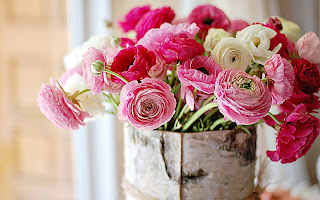 Nature___Flowers_Fresh_flowers_peonies_066084_.jpg