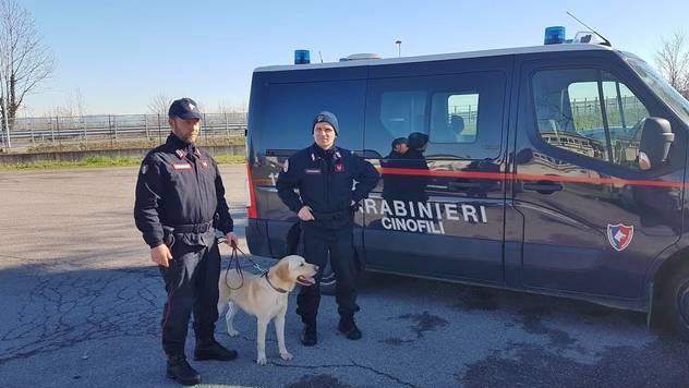 Carabinieri Superoperation, 19 arrested on drug trafficking, among them 5 Albanians
