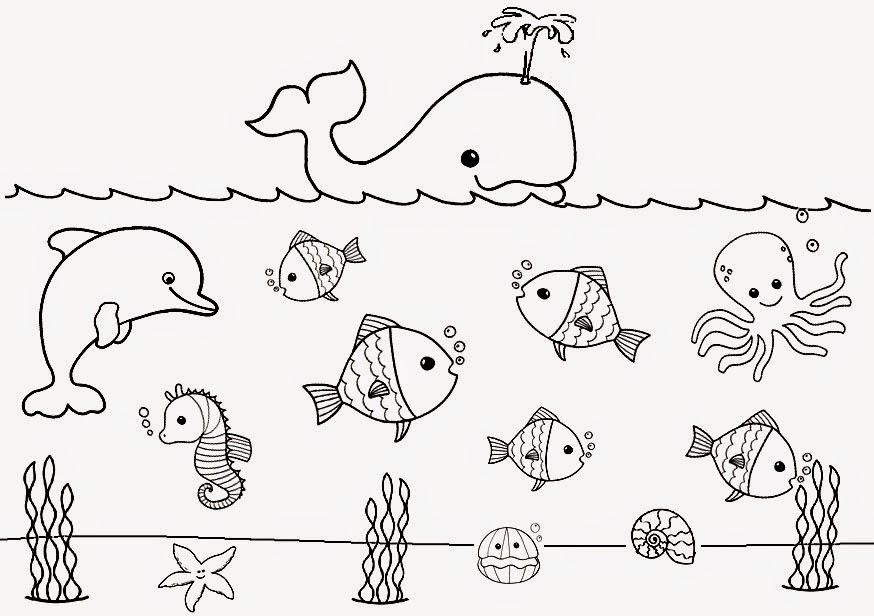 Dibujos De Animales Marinos Para Colorear: Recursos Para Educación Inicial: DIBUJOS DE ANIMALES PARA