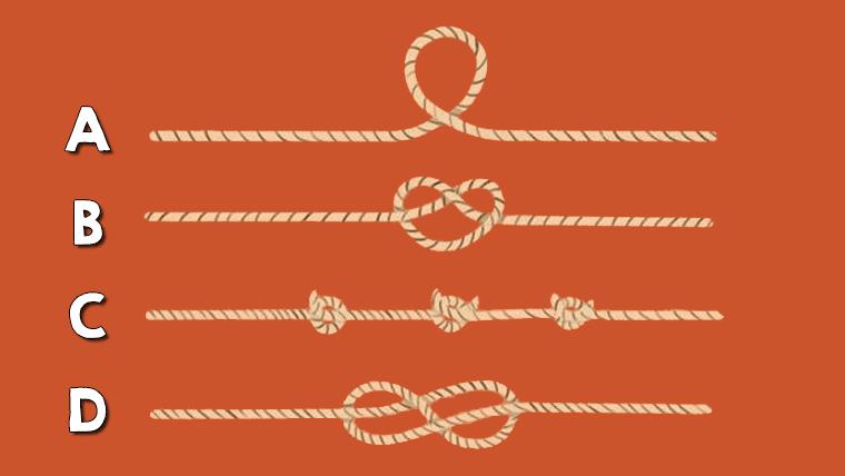 Qual é a corda mais longa? (Teste de inteligência)