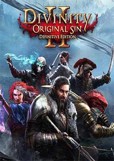 Divinity Original Sin 2 Definitive Edition PC download