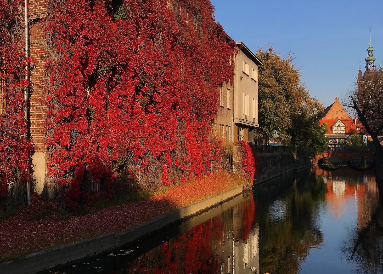 jesień w Gdańsku