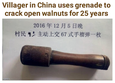 chinese villager uses grenade to crack open walnuts for 25 years