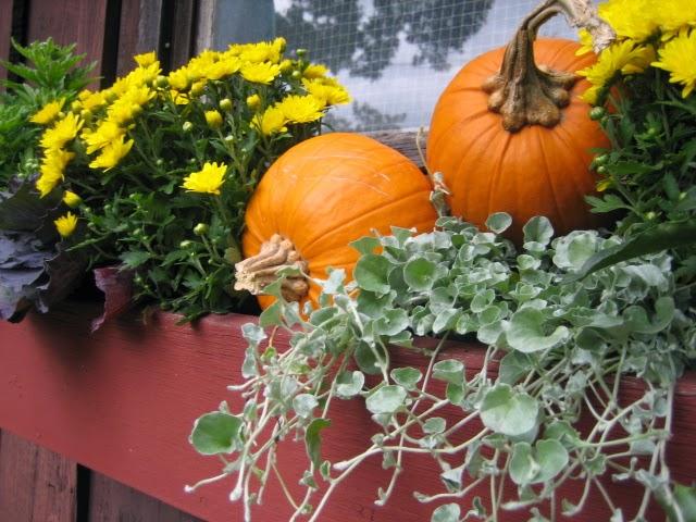 DesignsandEvents: Outdoor Harvest Decorations