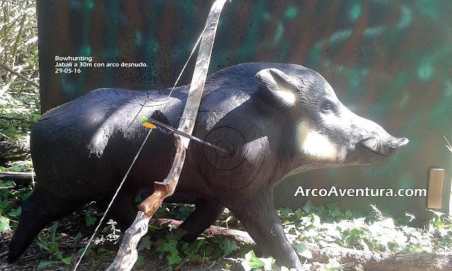 Tiro Arco Barcelona Aventura Bosque 3D