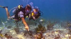 Discover scuba diving and Bubble maker are ideal ways to get your children to discover the underwater world.