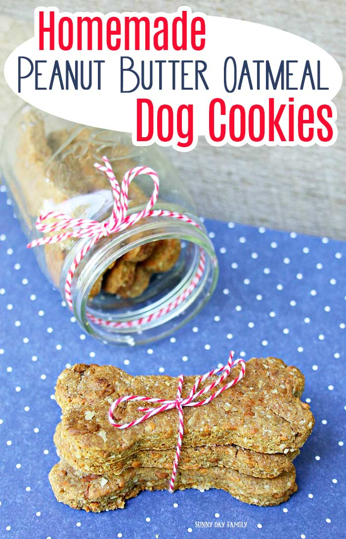 Homemade peanut butter oatmeal dog cookies your pup will love! This is an easy dog treat recipe with wholesome ingredients. Your dogs will love these homemade cookies! They make a great DIY gift in a jar for dogs and dog lovers. #dogtreats #dogtreatrecipes #homemadedogtreats #dogs #puppies
