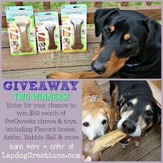 giveaway petqwerks flavorit dog bone chew