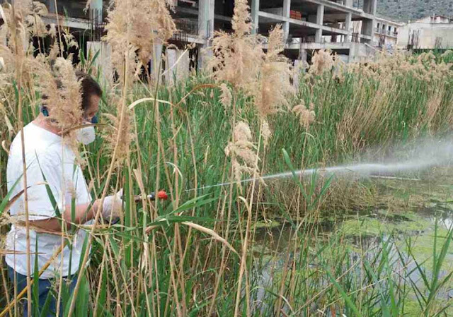 Καταπολέμηση των κουνουπιών 365 ημέρες το χρόνο σε όλη την έκταση του Δήμου Ναυπλιέων