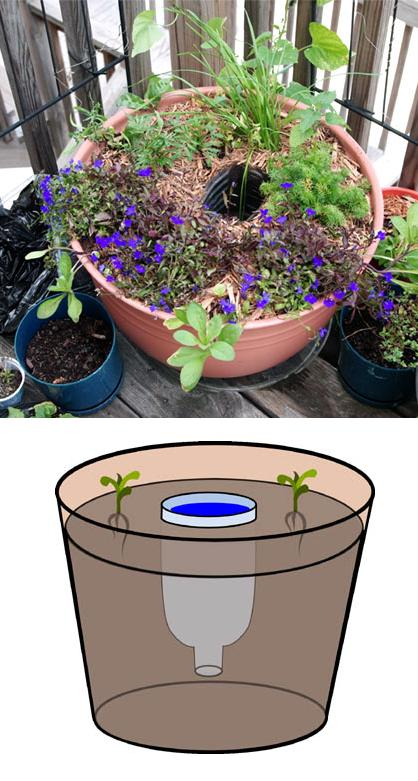 Idea : Self-Watering by Water Reservoir