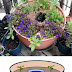 #Idea : Self-Watering by Water Reservoir
