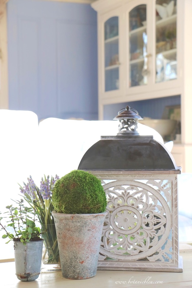 Spring Vignette With French Design Lantern and Botanicals