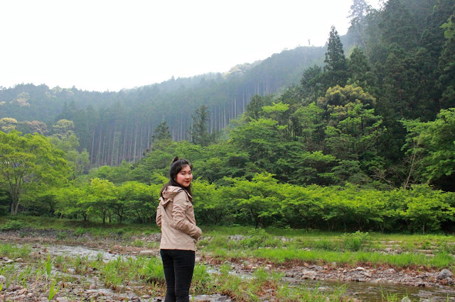 Japan | Camping in Shizuoka