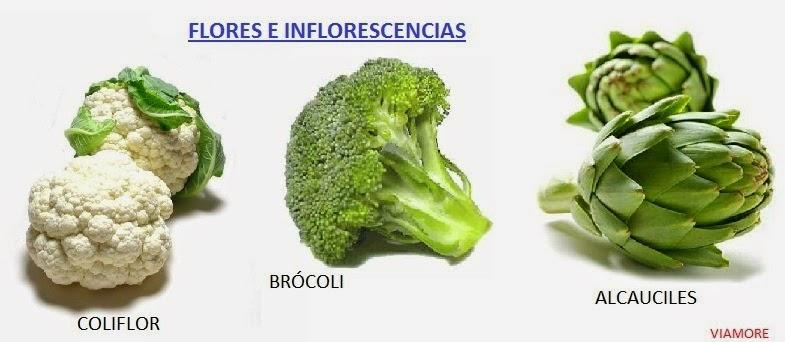 Resultado de imagen para hortalizas de FLOR comestible