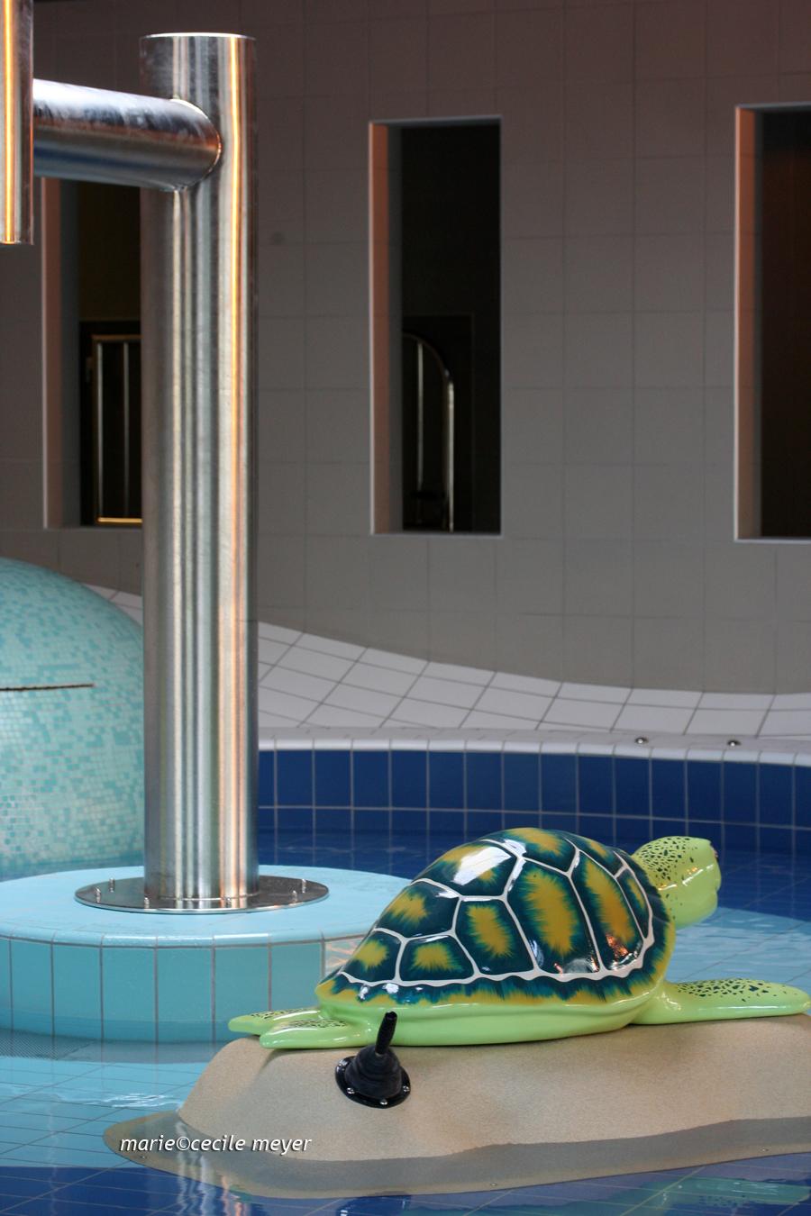 Eclosion inauguration de la piscine intercommunale du - Piscine de meaux ...
