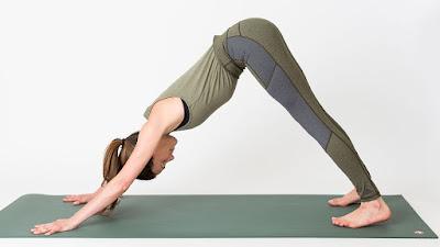 Những lợi ích không thể bỏ qua từ tư thế Yoga Chú chó vươn mình
