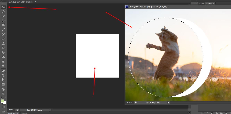 cara gambar menjadi bulat mudah dengan cara menggunakan tool marquee