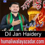 https://www.humaliwalyazadar.com/2018/09/zawar-dil-jan-haidery-nohay-2019.html