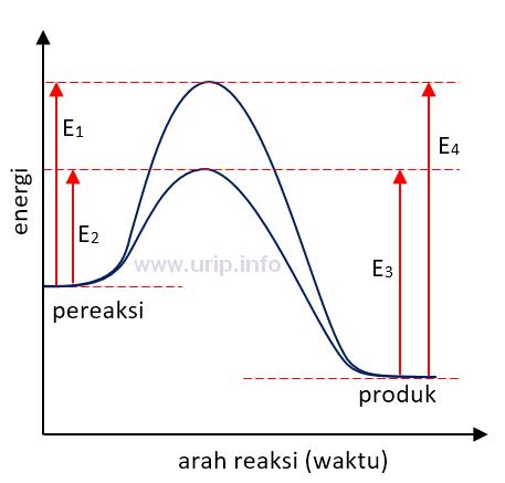 Pembahasan soal tentang profil diagram energi urip dot info b perubahan entalpi reaksi berkurang ketika katalis digunakan c reaksi katalisis ke depan bersifat endotermis d e4 adalah energi aktivasi untuk reaksi ccuart Gallery