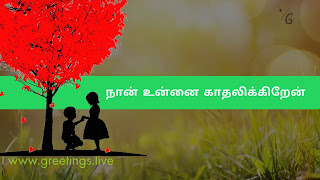 "Love tree a boy proposing to girl  "" Nāṉ uṉṉai kātalikkiṟēṉ""  love proposal in Tamil Language"